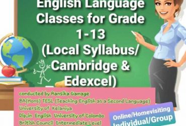English Literature & Language Classes-Homevisiting/Online
