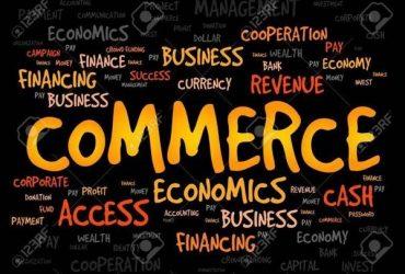 Grade 10/11 English medium commerce